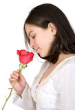 Hoping for romance - red rose Stock Photos