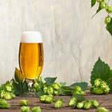 hopkegels en glas bier Royalty-vrije Stock Afbeelding