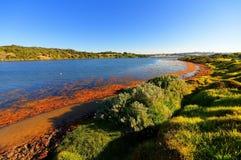 Hopkins Fluss stockbilder