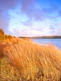Hopkins Fluss Warrnambool Australien Stockfoto