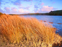 Hopkins Fluss Warrnambool Australien lizenzfreie stockbilder
