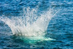 Hopp med en färgstänk i havet Royaltyfria Bilder
