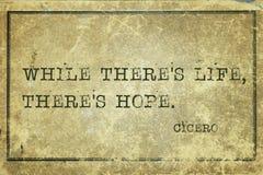 Hopp vid liv Cicero royaltyfri foto