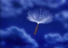 hoppa fallskärm fröskidan kärnar ur wind Fotografering för Bildbyråer