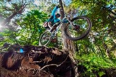 Hoppa och flyga på en mountainbike i skog Arkivfoto