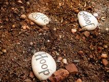 Hoppas förälskelse- och tromeddelandet på stenar som förläggas på jordning Royaltyfri Foto