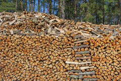 Сhopped firewood Royalty Free Stock Photo