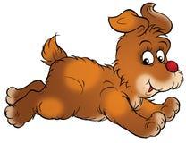 Hopping Puppy Royalty Free Stock Photo