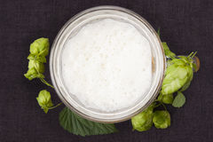 Hops around beer from above. Royalty Free Stock Images