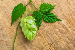 Hops background of the old board royalty free stock image