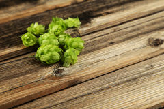 Hops on brown wooden background Royalty Free Stock Photo