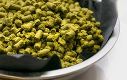 Dried hops in a bowl. royalty free stock photo