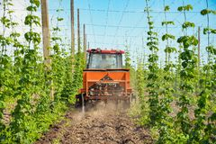 Hops Field And Tractor Stock Photography