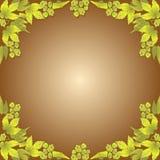 Hops frame vector illustration