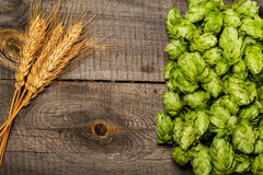 Hops and golden ripe wheat Stock Photo