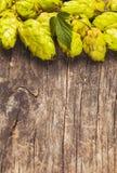 The hops heap Royalty Free Stock Photos