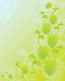 Hops Hintergrund Lizenzfreie Stockfotos