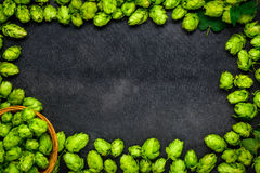 Hops and Hop flowers as Copy Space Area Frame Stock Images