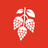 Hops icon. Beer and hop, Hops symbol. UI. Web. Logo. Sign. Flat design. App.Stock Stock Photography