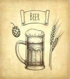 Hops, malt and beer mug Royalty Free Stock Photos