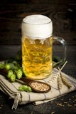 Hops and malt seeds and spikes jug full with beer on cloth napkin Royalty Free Stock Photos