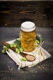 Hops and malt seeds and spikes jug full with beer on cloth napkin royalty free stock images