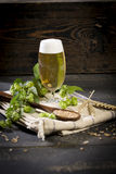 Hops and malt seeds and spikes jug full with beer on cloth napkin Royalty Free Stock Image