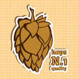 Hops Number 1 Quality Royalty Free Stock Images