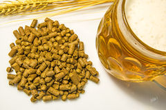 Hops pellets with beer glass Royalty Free Stock Image