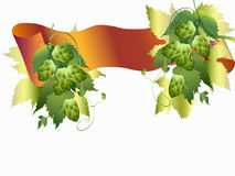 Hops plant and ribbon Stock Images