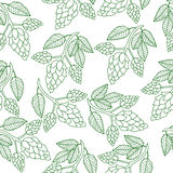 Hops Plant Seamless Pattern, Hand Drawing Style. Hops Background. Hops Wallpaper. Vector Illustration Stock Photos