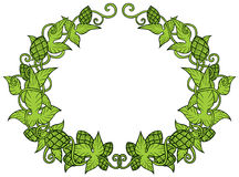Hops vector visual graphic frame of border Stock Images