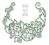 Hops vector visual graphic vignette Royalty Free Stock Images