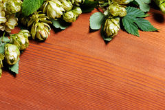Hops on wooden background Stock Photography