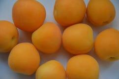 Hopsamling av aprikors royaltyfri fotografi