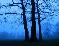 Hora azul Foto de archivo libre de regalías
