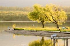 Hora de oro de la serenidad del tiempo de resorte en el lago Imagen de archivo libre de regalías