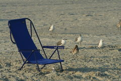 Hora de relaxar! Fotos de Stock