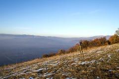 A hora dourada dos montes cobre foto de stock royalty free
