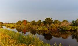 Hora dourada em Merritt Island National Wildlife Refuge, Florida imagem de stock