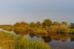 Hora dourada em Merritt Island National Wildlife Refuge, Florida Fotos de Stock