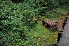 Hora pacífica de descansar sobre un banco en parque natural escénico Fotografía de archivo
