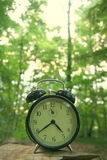 Hora para la naturaleza Imagen de archivo libre de regalías