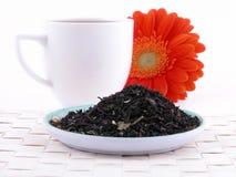 Hora para o chá Imagem de Stock
