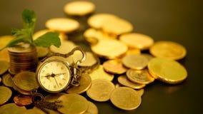 Hora para o sucesso do negócio da finança Investimento, conceito financeiro das ideias do negócio Eficiência da gestão, Tempo é d video estoque