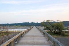 HORAI most Zdjęcia Royalty Free
