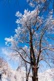 Horaire d'hiver Photo libre de droits