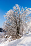 Horaire d'hiver Images stock