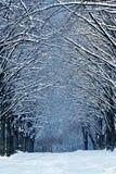 Horaire d'hiver en stationnement Photos stock