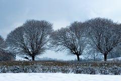 Horaire d'hiver en stationnement Photos libres de droits